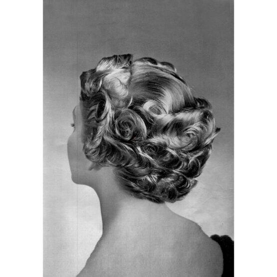 PENTEADO 1952