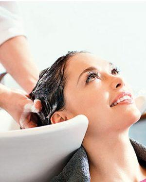 Shampoo Calha